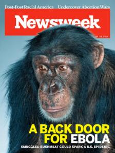 chimp ebola